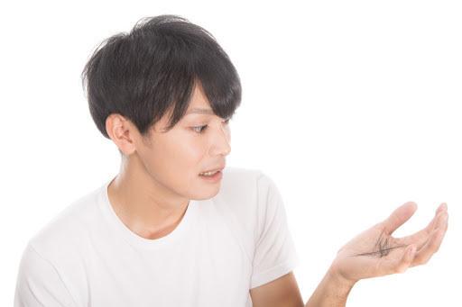 夏の抜け毛.jpg